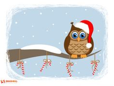 Funny owl waiting for Holidays - Desktop Wallpaper Calendars : December 2013 (Christmas Edition) School Projects, Projects To Try, Owl Food, Funny Owls, Creative Artwork, December 2013, Recipe Cards, Winter Time, Art Dolls