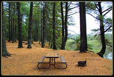Pictures of Campsites!!! Ontario Parks