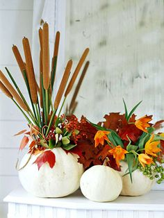 love the contrast with the red leaves. ditch the cat tails though.