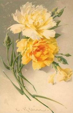 Vintage floral postcard by Catherine Klein
