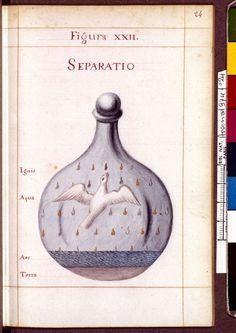 Figura XXII - Separatio - Sapientia veterum philosophorum, sive doctrina eorumdem de summa et universali medicina 40 hierogliphis explicata