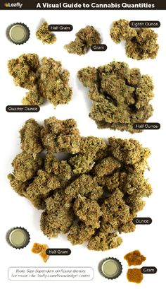Weed Measurements: The Marijuana Metric System