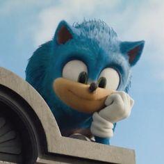 꿻뛟 (@Indigo_Wisp) / Twitter Sonic The Hedgehog, Hedgehog Movie, Cute Hedgehog, Shadow The Hedgehog, Sonic Funny, The Sonic, Sonic Fan Characters, Nintendo Characters, Sonic Videos