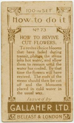 40 Vintage Life Hacks from 100 Years Ago [some of these are still great tips! How To Make Water, How To Make Fire, How To Remove, Lifehacks, Large Candles, Simple Life Hacks, Cut Flowers, The Ordinary, Household Tips
