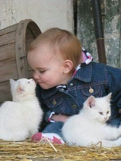 Awwww.... little bald girl baby is Buddies with the cute little kittens. I LOVE this photo!!!