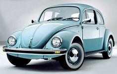 Beautiful blue beetle