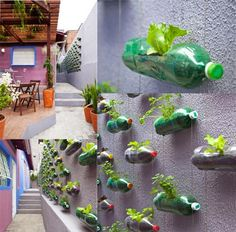 Easy Ideas for Window Herb Garden : Window Sill Herb Garden Ideas. Balcony Herb Gardens, Small Gardens, Balcony Gardening, Garden Plants, Recycle Plastic Bottles, Garden Care, Plantation, Tropical Plants, Growing Vegetables