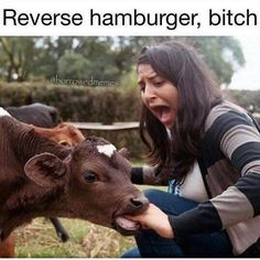 Funny pictures about The Handburger Vengeance. Oh, and cool pics about The Handburger Vengeance. Also, The Handburger Vengeance photos. Very Funny Gif, The Funny, Crazy Funny, Super Funny, Haha, Funny Animals, Cute Animals, Farm Animals, Whatsapp Videos