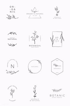 Organic product brand logo vector collection premium image by sasi Graphisches Design, Brand Design, Free Logo Design, Logo Desing, Bakery Logo Design, Vector Logo Design, Name Design, Design Model, Design Elements