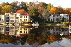 Reston, Virginia If this looks like a place ypu would like to call home. Please call me @ Keller Williams. I can make it happen