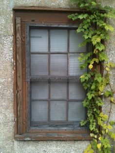 Old Window | Original Photography by Nadine Avola