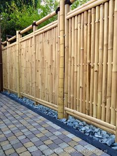Bamboo Roof landscape-Bamboo - Click Image to See More Reference of Bamboo Roof landscape Bamboo Garden Fences, Bamboo Privacy Fence, Bamboo Roof, Bamboo Wall, Backyard Fences, Backyard Landscaping, Fence Design, Garden Design, Cerca Natural