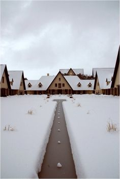 university of ifrane Ifrane Morocco, Western Sahara, African Countries, Marrakesh, North Africa, Study Abroad, Travel Around The World, Wonders Of The World, Places Ive Been