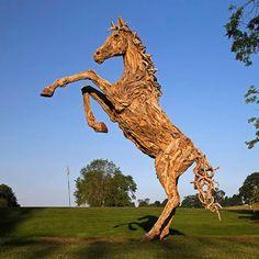 En el año 2005, el artista James Doran-Webb empezó a trabajar con los troncos para la creación de muebles y posteriormente comenzó a utilizarlos para experimentar con esculturas de animales.