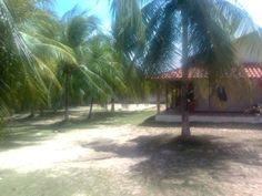 Terreno A 50M Da Praia Em Itacimirim - Excelente oportunidade em um dos últimos terrenos na Praia de Itacimirim, possui ao lado outro terreno podendo ser vendidos juntos...