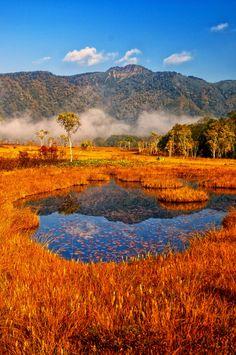 Photograph Autumn colors. by Shoichi Konnai on 500px