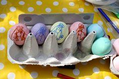 coloured eggs..