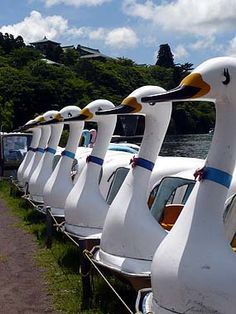 "All I can think of/hear when I look at this is ""AFLAC!"" lol - even though it's ""Swan Boats ( pedalos ), Lake Ashi Hakone Japan Go To Japan, Japan Trip, Japan Travel, Hakone Japan, Day Trips From Tokyo, Japan Holidays, All About Japan, Turning Japanese, Nippon"