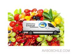Distribuidora de frutas y verduras Rancagua - avisoschile