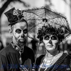 LR-3238 Photography Sites, My Portfolio, Professional Photography, Travel Photographer, Halloween Face Makeup, Wildlife, Culture, Gallery, Photos