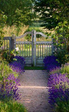 beautiful gate and walkway