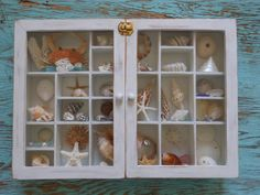 Sea Shell Shadow Box Filled with Shells and a REAL Crab Nautical Decor for Coastal Living by searchnrescue2. $120.00, via Etsy.