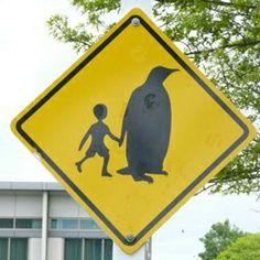 I want to live where penguins help kids cross the street!