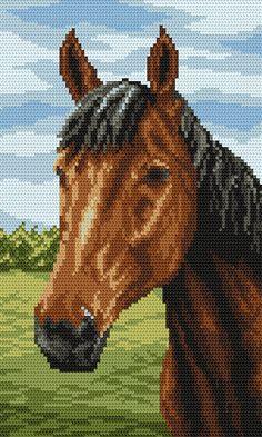 Cavallo - Coricamo -Dipinti con filo, schemi di punto croce, punto ...