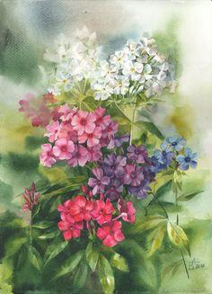 """акварель """"Флоксы в саду"""" автор    Анастасия Беседина"""