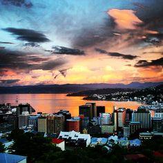 Wellington in Wellington