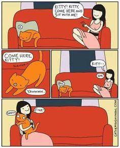 Simply kitty