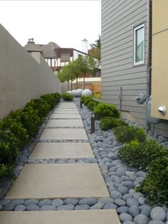 13 Low Maintenance Front Yard Landscaping Ideas