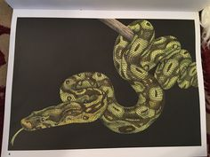 Boat Constrictor Page 4 Intricate Art