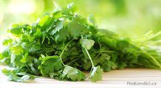 Parsley, Herbs, Food, Twitter, Fitness, Essen, Herb, Meals, Yemek