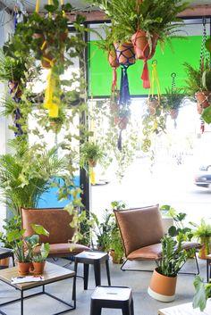 Urban Jungle Bloggers Zalando Summer House Berlin plant styling
