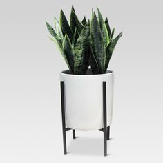 Enjoy all the freshness of a houseplant without any of the required upkeep with this Artificial Plant in Stand from Project 62™. The modern ceramic planter comes in a simple white glaze for easy style, while the black metal stand creates cool contrast. Perch this lifelike artificial snake plant next to an armchair or bench to add some life to your space.<br><br>1962 was a big year. Modernist design hit its peak and moved into homes across the country. And in Minnesota, Ta...