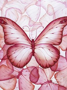 Pink Butterflies Painting by Christina Meeusen - Pink Butterflies Fine Art Prints and Posters for Sale