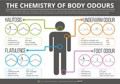 Chemistry of Body Odours