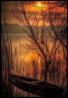 Golden lake ~ Photo by Nuno Trindade Beautiful World, Beautiful Places, Art Sur Toile, Beautiful Sunrise, Belle Photo, Pretty Pictures, Beautiful Landscapes, The Great Outdoors, Nature Photography