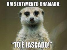 Post  #: #tãoagora#tãotão......