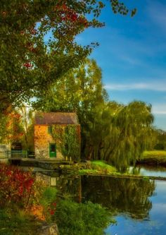 "connor-burrows: ""Autumn at Gamle Bergen by toreeideh """