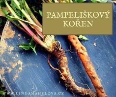 Pampeliška je moje oblíbená bylinka. Miluji louky poseté pampeliškami, když na nich bzučí včely. Znamená to, že jaro už je opravdu tady. Taky máte rádi pampelišky? Korn, Asparagus, Health Fitness, Herbs, Vegetables, Gardening, Studs, Lawn And Garden, Herb