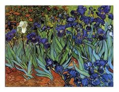 """dominusvenustas: """" Vincent van Gogh, Irises, 1889 Theme of the day in case you hadn't guessed…. Van Gogh's irises. Van gogh's glorious irises. The vibrant colours and wonderful rhythms say all. Art Van, Van Gogh Art, Van Gogh Pinturas, Vincent Van Gogh, Paul Gauguin, Iris Painting, Painting Prints, Art Prints, Canvas Prints"""