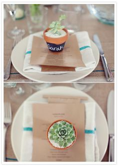 great succulent place holders & favours