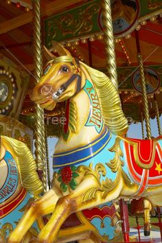 Merry Go Round Horses | Downloaded photo of merry-go-round horse will not contain the ...
