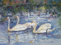 SOLD. Swans in Evening Light. Watercolour. 12x8.5in. https://www.mariaoneill.co.uk/