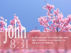 easter scriptures   Free Desktop Bible Verse Wallpaper John : 8:31