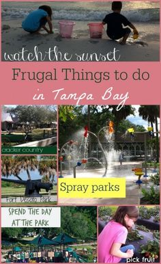 Free and inexpensive things to do in Tampa Bay. Just in time for summer!