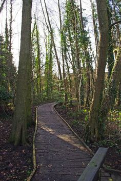 Boardwalk in Spennells Valley Nature Reserve, Spennells, Kidderminster by P L Chadwick, via Geograph