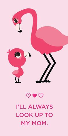 Mom and little one flamingos - cute!